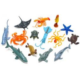소프트바다생물 14종