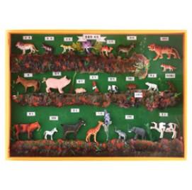 동물의세계표본